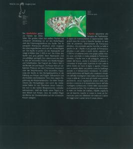 XC560-04C34095