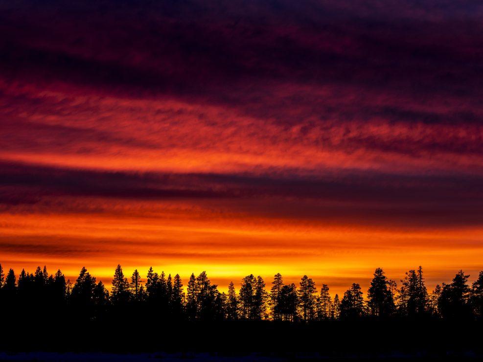 Senza pretese uno scatto dello spettacolare tramonto che sovrastava la nostra zona durante una sessione di appostamento lungo un remoto fiume.